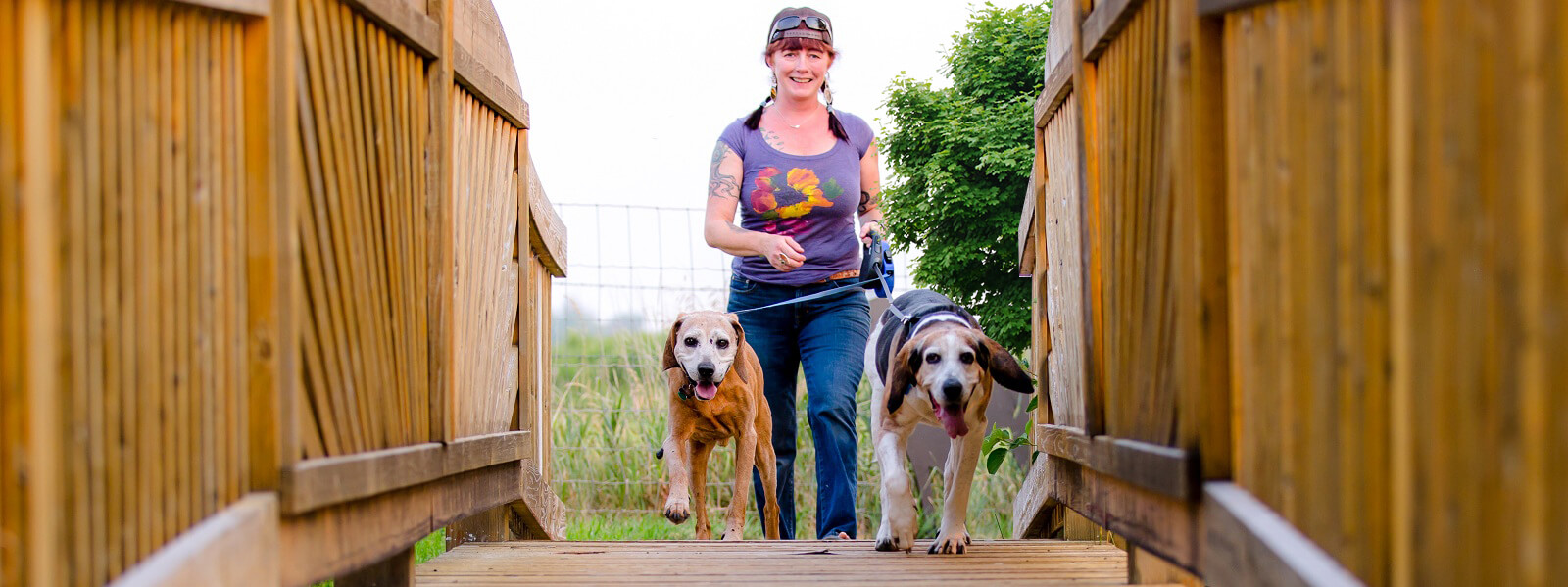 dog walking service in Oakville